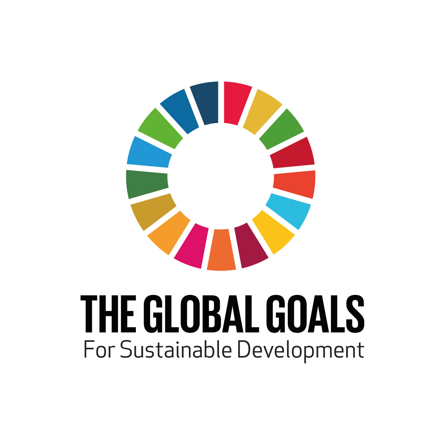 Global Goals Logo Primary
