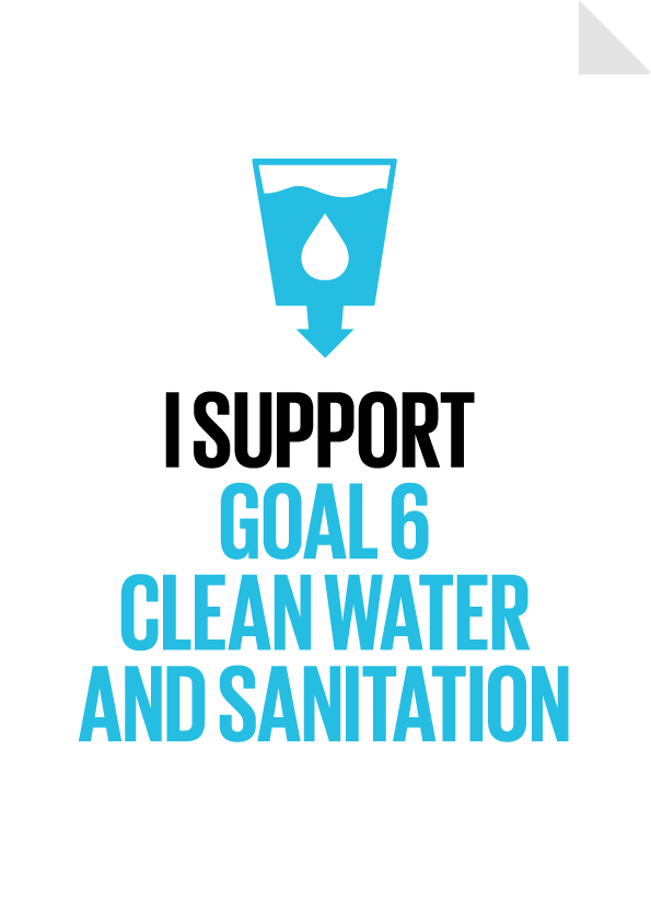 Clean Water and Sanitation Poster Preview