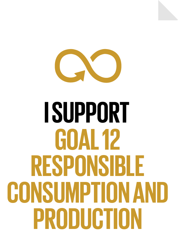 I support Goal 12 - Responsible Consumption and Production