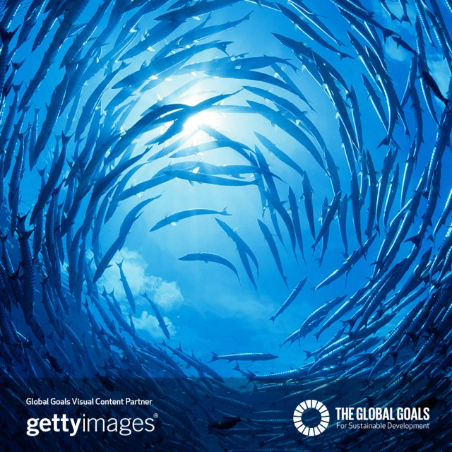 If we want to protect life below water, we NEED to tell everyone about @TheGlobalGoals now.